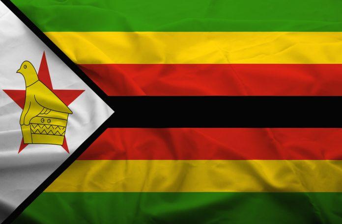 The Emperor's New Hair/Heir #MugabeFalls