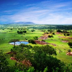 Tanzania: A breakthrough petroleum bill, and the world's newest SWF