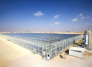 Oman Announces Plans To Build World's Largest Solar Project
