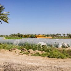 Iraq: Wrapping Up A Busy Summer In The Cradle Of Civilization