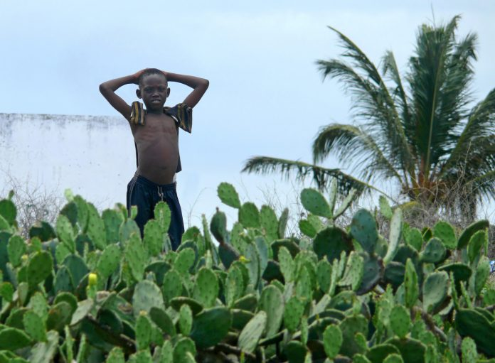 Don't Cry For Me Mozambique: Why Nations Are Suddenly Curbing Defaults 3