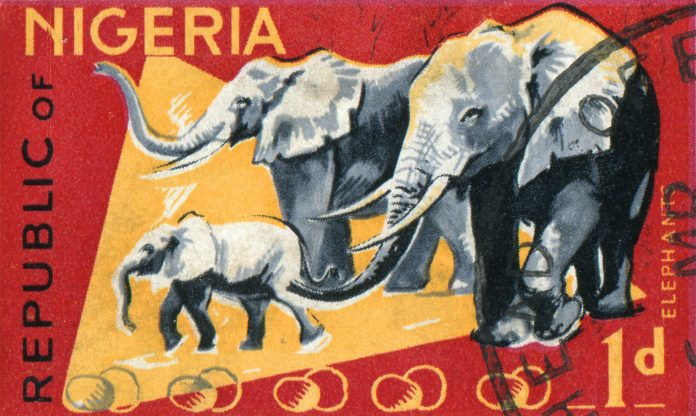 So Nigeria Isn't Corrupt Anymore? Watch for Elephants in Buhari's Room 4
