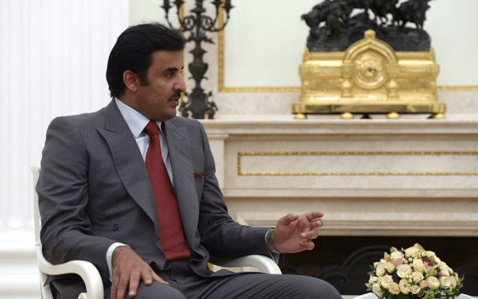 The Young Emir: Emir Tamim and Qatar's Future 3