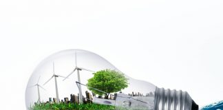How Will Trump Impact Renewable Energy Projects in Emerging Markets? 2